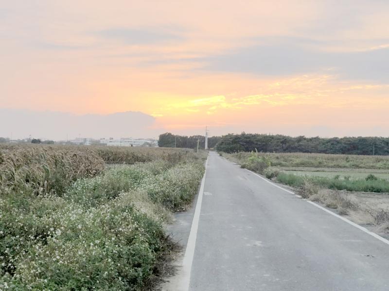 七股三合段田地,台南市七股區三合段