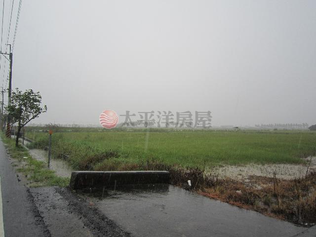 後港段田地,台南市七股區後港段