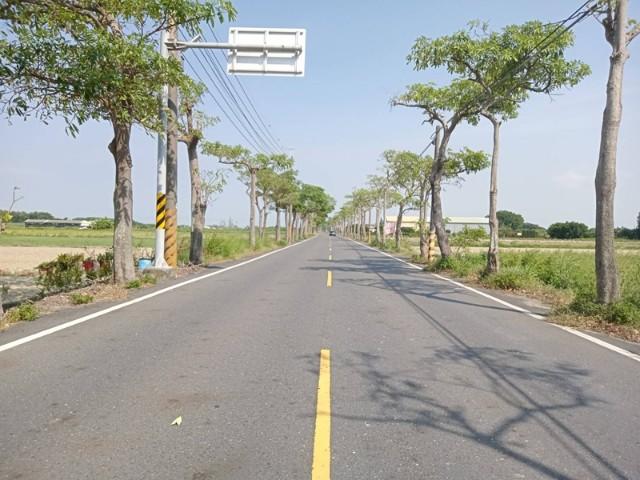 樹林村莊建地,台南市七股區竹橋段