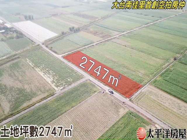 七股最美麗農地,台南市七股區三合段