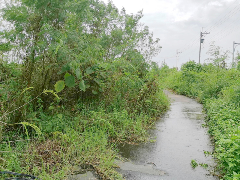 西港大塭寮農保農地,台南市西港區大塭寮段