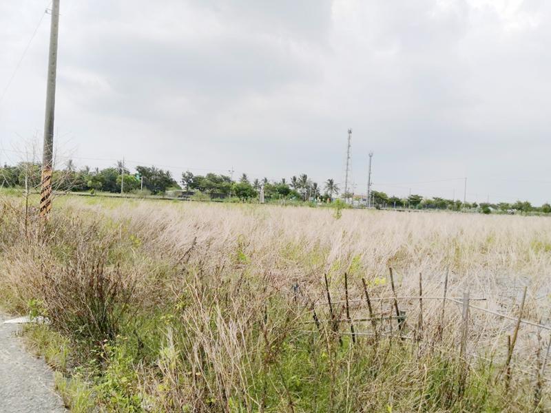 西港大塭寮段方正農地,台南市西港區大塭寮段