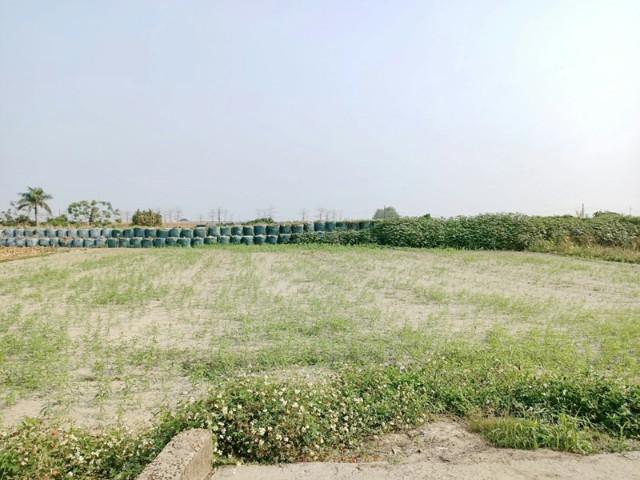 佳里區休閒小農田,台南市佳里區龍安段