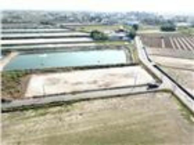 北門國小(下殺)農地,台南市北門區麗湖段