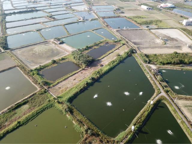 學甲中洲下殺農地,台南市學甲區中洲段