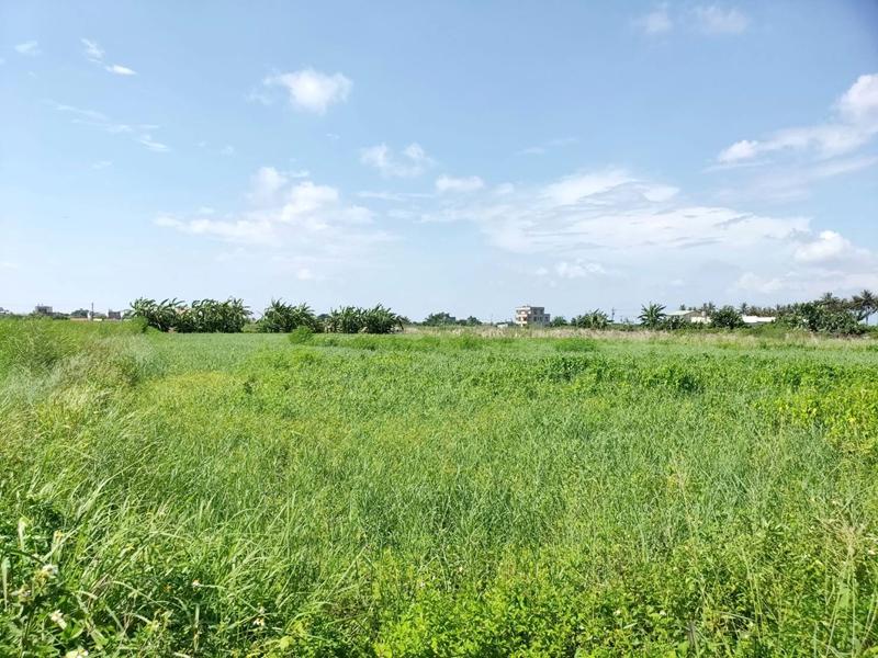 塭子內有水有電田,台南市佳里區塭子內段