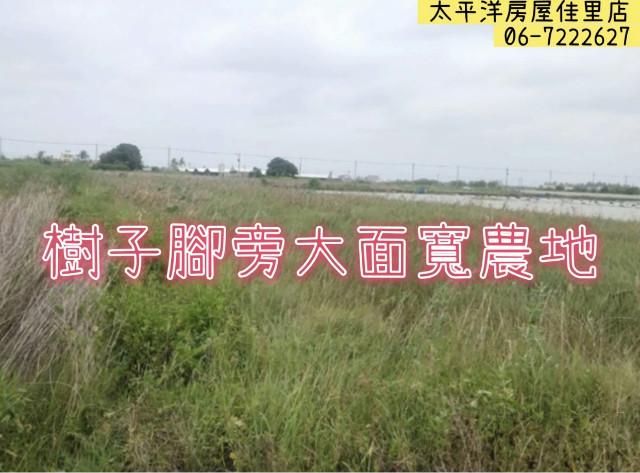 樹子腳旁大面寬農地,台南市七股區竹子港段