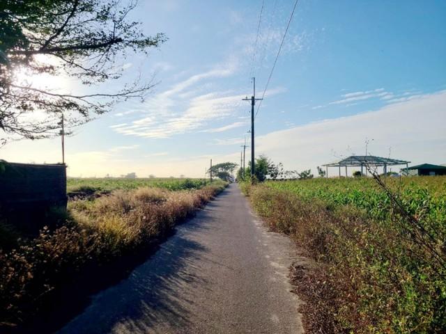 將軍巷口大面寬農地,台南市將軍區巷口段