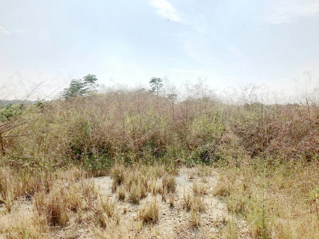 科工區都計農地,台南市安南區淵南段