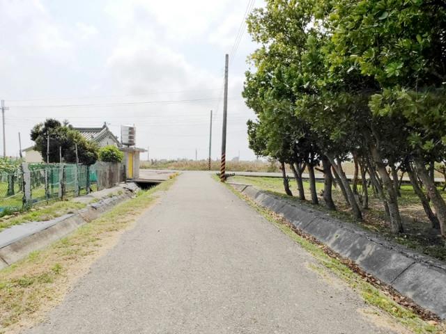 將軍火龍果園(二),台南市將軍區巷口段