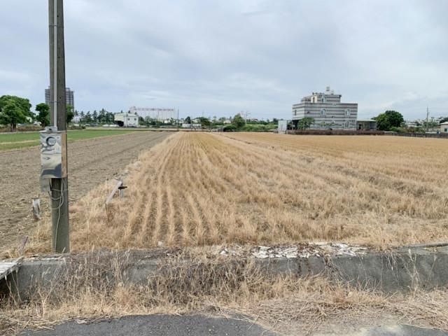 南科LM區旁優質都內農地,台南市善化區南小新段