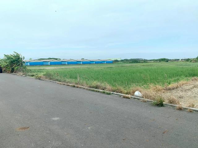 七股大文美農地,台南市七股區 大文段
