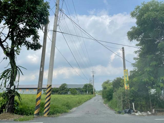 王母娘娘的芒果樹[城鄉發展區],台南市官田區社子段
