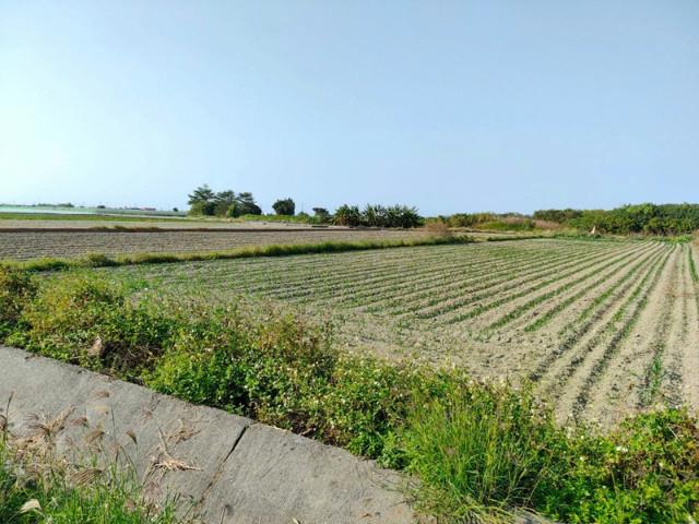 將軍段近台17線農地(一),台南市將軍區將軍段