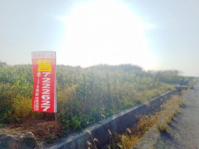 樹子腳二分四,台南市七股區樹林段
