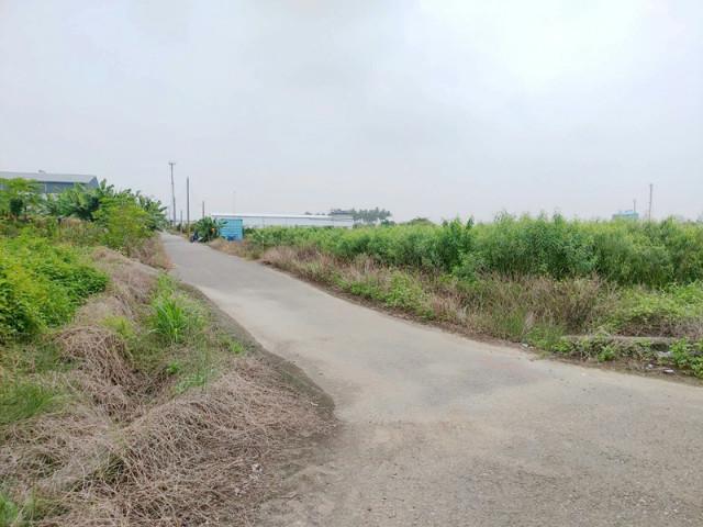 大塭寮双面路美田,台南市西港區大塭寮段