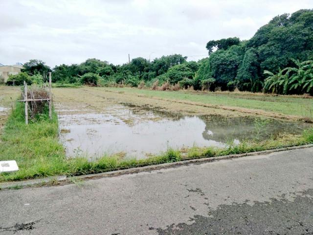 安定西港大橋農地,台南市安定區海寮段