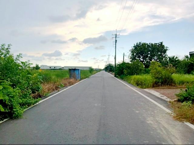 178縣道旁特農,台南市安定區港子尾段